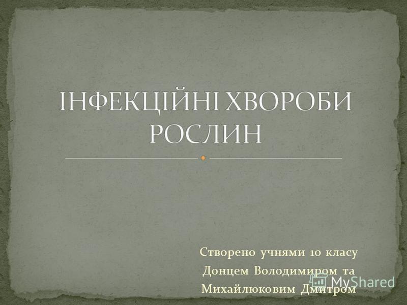 Створено учнями 10 класу Донцем Володимиром та Михайлюковим Дмитром