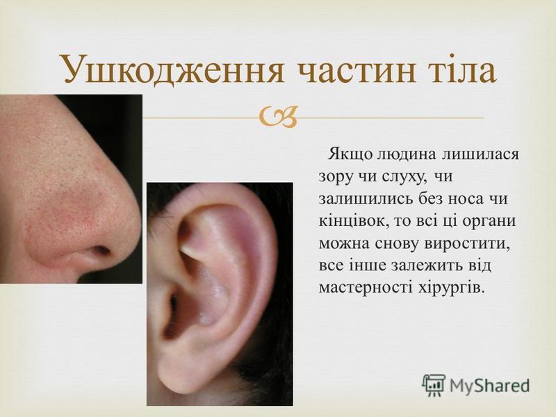 Якщо людина лишилася зору чи слуху, чи залишились без носа чи кінцівок, то всі ці органи можна снову виростити, все інше залежить від мастерності хірургів. Ушкодження частин тіла