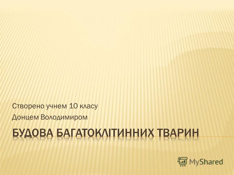 Створено учнем 10 класу Донцем Володимиром