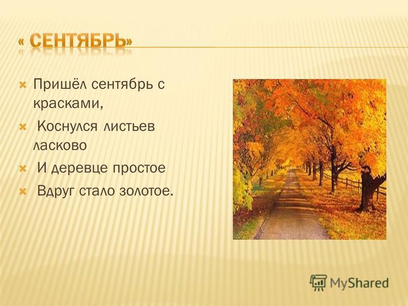 Пришёл сентябрь с красками, Коснулся листьев ласково И деревце простое Вдруг стало золотое.