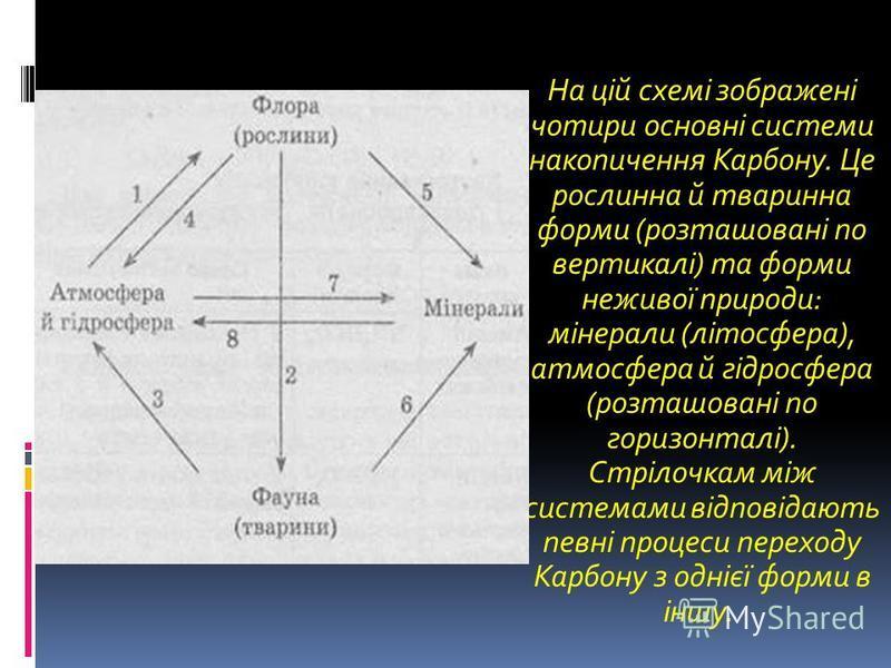 На цій схемі зображені чотири основні системи накопичення Карбону. Це рослинна й тваринна форми (розташовані по вертикалі) та форми неживої природи: мінерали (літосфера), атмосфера й гідросфера (розташовані по горизонталі). Стрілочкам між системами в