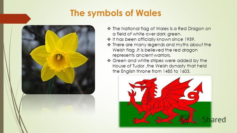 The symbols of Wales The National flag of Wales is a Red Dragon on a field of white over dark green. It has been officially known since 1959. There are many legends and myths about the Welsh flag.It is believed the red dragon represents ancient warri