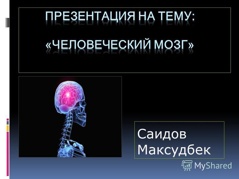 Саидов Максудбек