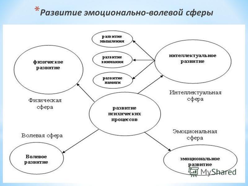 * Развитие эмоционально-волевой сферы