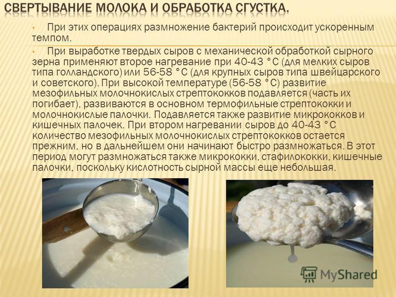 При этих операциях размножение бактерий происходит ускоренным темпом. При выработке твердых сыров с механической обработкой сырного зерна применяют второе нагревание при 40-43 °С (для мелких сыров типа голландского) или 56-58 °С (для крупных сыров ти