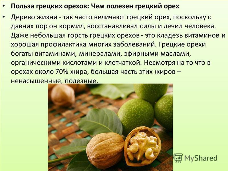 Польза грецких орехов: Чем полезен грецкий орех Дерево жизни - так часто величают грецкий орех, поскольку с давних пор он кормил, восстанавливал силы и лечил человека. Даже небольшая горсть грецких орехов - это кладезь витаминов и хорошая профилактик