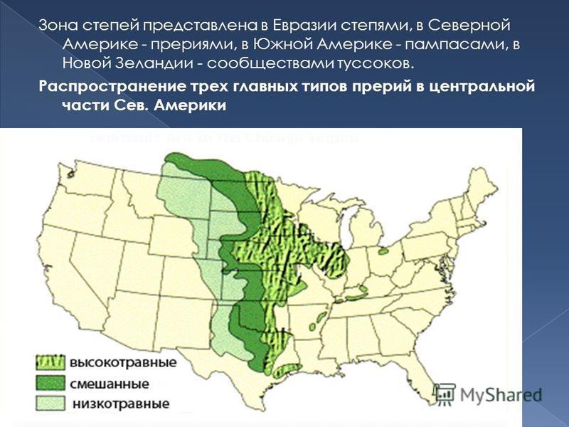 3 она степей представлена в Евразии степями, в Северной Америке - прериями, в Южной Америке - пампасами, в Новой Зеландии - сообществами тусовок. Распространение трех главных типов прерий в центральной части Сев. Америки