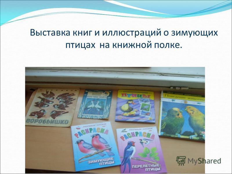 Выставка книг и иллюстраций о зимующих птицах на книжной полке.