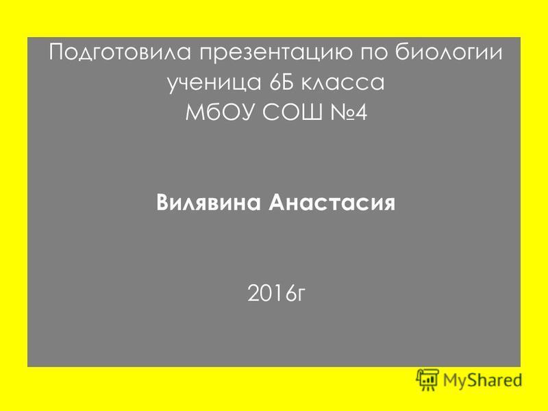 Подготовила презентацию по биологии ученица 6Б класса МбОУ СОШ 4 Вилявина Анастасия 2016 г