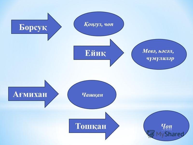 Борсуқ Ейиқ Ағмихан Тошқан Қоңғуз, чөп Мевә, һәсәл, чүмүлиләр Чашқан