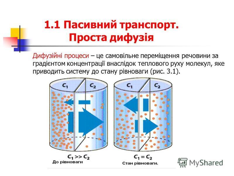 1.1 Пасивний транспорт. Проста дифузія Дифузійні процеси – це самовільне переміщення речовини за градієнтом концентрації внаслідок теплового руху молекул, яке приводить систему до стану рівноваги (рис. 3.1).