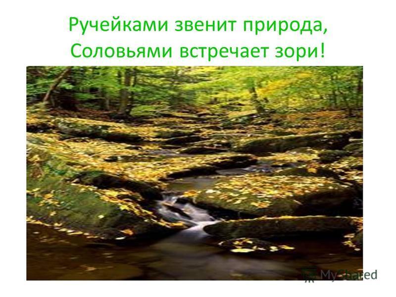 Ручейками звенит природа, Соловьями встречает зори!