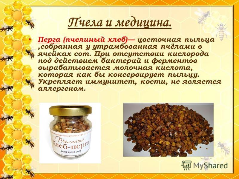Пчела и медицина. Перга (пчелиный хлеб) цветочная пыльца,собранная у утрамбованная пчёлами в ячейках сот. При отсутствии кислорода под действием бактерий и ферментов вырабатывается молочная кислота, которая как бы консервирует пыльцу. Укрепляет иммун