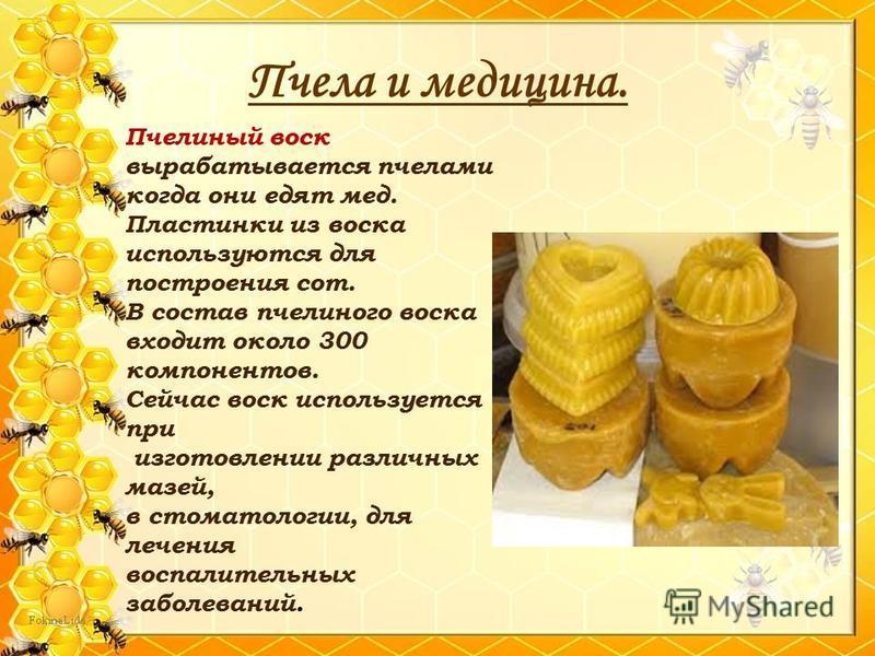 Пчела и медицина. Пчелиный воск вырабатывается пчелами когда они едят мед. Пластинки из воска используются для построения сот. В состав пчелиного воска входит около 300 компонентов. Сейчас воск используется при изготовлении различных мазей, в стомато