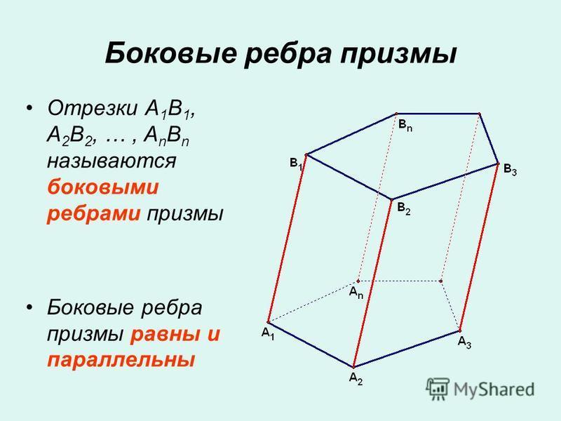 Отрезки A 1 B 1, A 2 B 2, …, A n B n называются боковыми ребрами призмы Боковые ребра призмы равны и параллельны Боковые ребра призмы