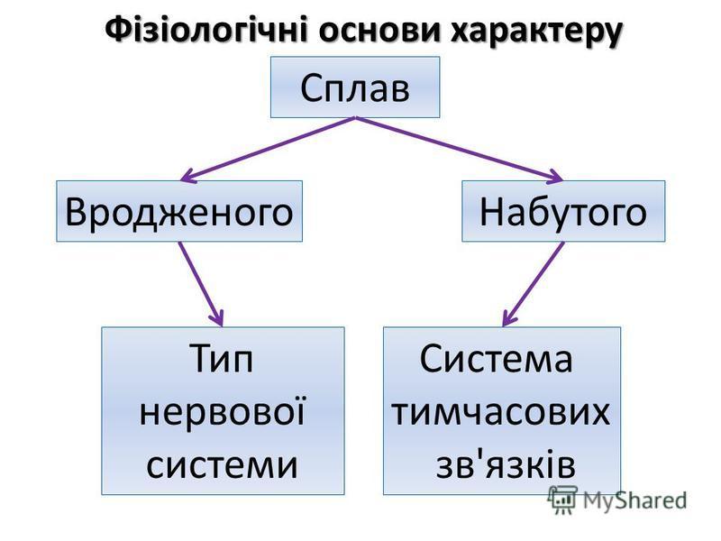 Фізіологічні основи характеру Сплав НабутогоВродженого Тип нервової системи Система тимчасових зв'язків