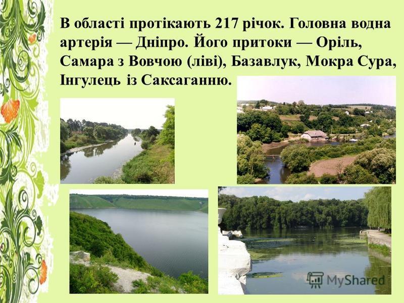 В області протікають 217 річок. Головна водна артерія Дніпро. Його притоки Оріль, Самара з Вовчою (ліві), Базавлук, Мокра Сура, Інгулець із Саксаганню.