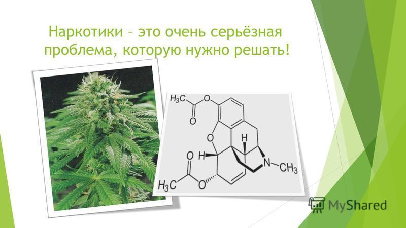Наркотики – это очень серьёзная проблема, которую нужно решать!