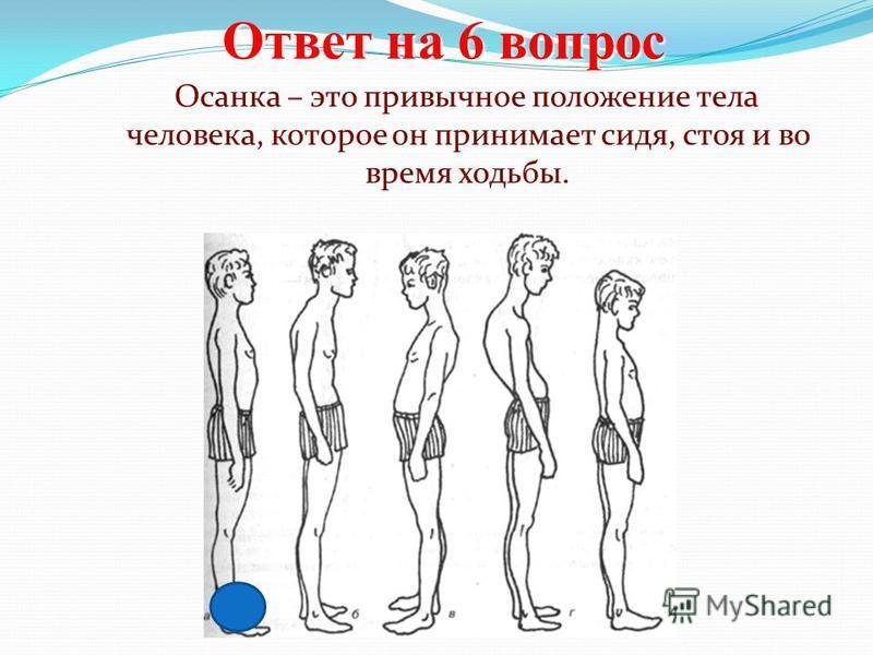 Ответ на 6 вопрос Осанка – это привычное положение тела человека, которое он принимает сидя, стоя и во время ходьбы.