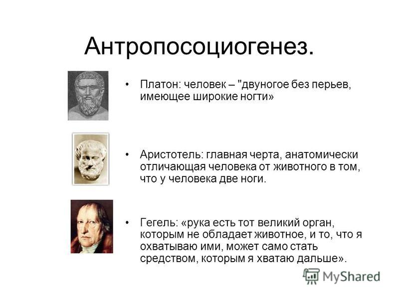 Антропосоциогенез. Платон: человек –