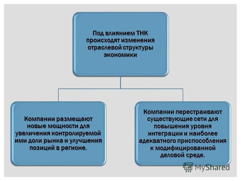 Под влиянием ТНК происходят изменения отраслевой структуры экономики Компании размещают новые мощности для увеличения контролируемой ими доли рынка и улучшения позиций в регионе. Компании перестраивают существующие сети для повышения уровня интеграци