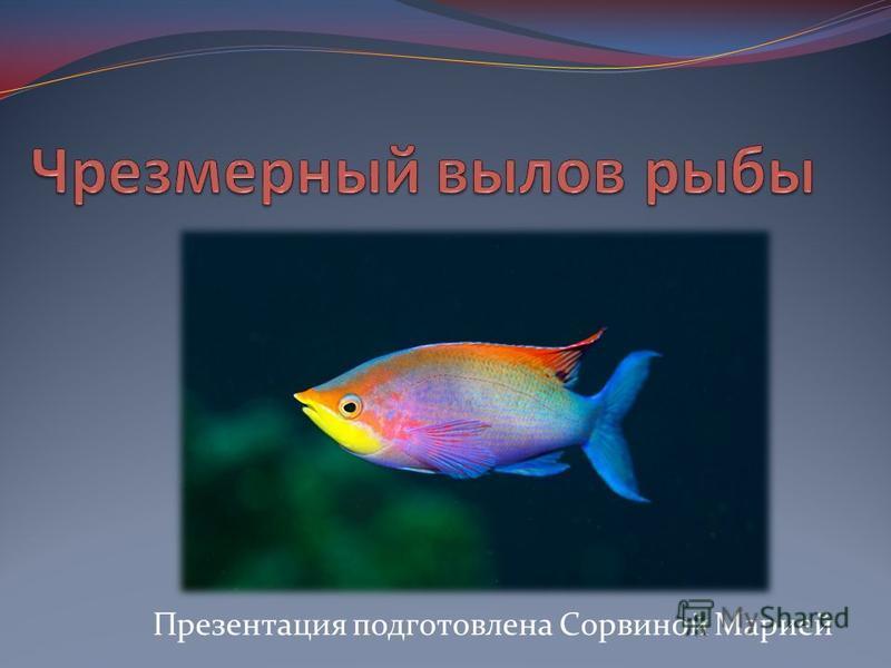 Презентация подготовлена Сорвиной Марией