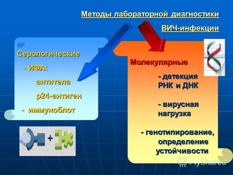 Серологические - ИФА: - ИФА: антитела антитела р 24-антиген р 24-антиген - иммуноблот - иммуноблот Методы лабораторной диагностики ВИЧ-инфекции Молекулярные - детекция - детекция РНК и ДНК РНК и ДНК - вирусная - вирусная нагрузка нагрузка - генотипир