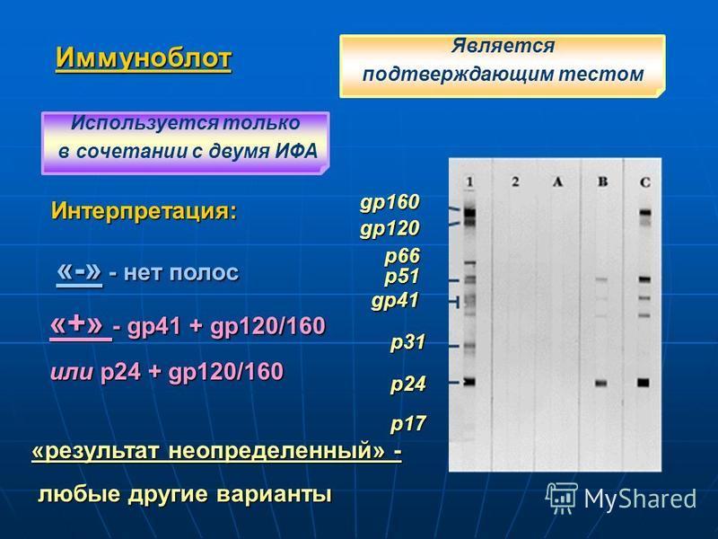 Иммуноблот gp160 gp120 p51 gp41 p31 p24 Интерпретация: «-» - нет полос «+» - gp41 + gp120/160 или p24 + gp120/160 «результат неопределенный» - любые другие варианты любые другие варианты Является подтверждающим тестом Используется только в сочетании