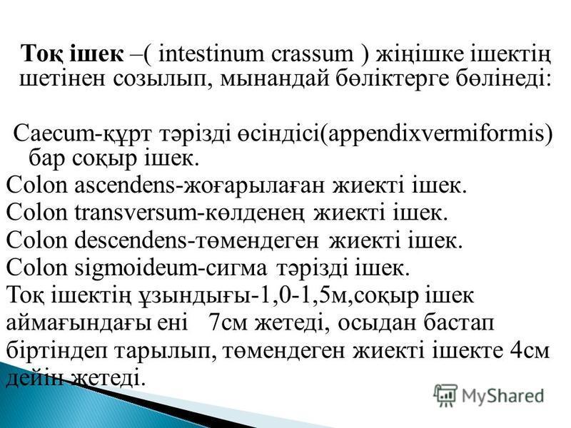 Тоқ ішек –( intestinum crassum ) жіңішке ішектің шетінен созылып, мынандай бөліктерге бөлінеді: Caecum-құрт тәрізді өсіндісі(appendixvermiformis) бар соқыр ішек. Colon ascendens-жоғарылаған жиекті ішек. Colon transversum-көлденең жиекті ішек. Colon d