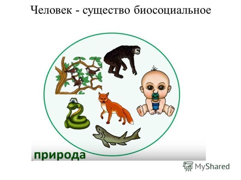 Человек - существо биосоциальное