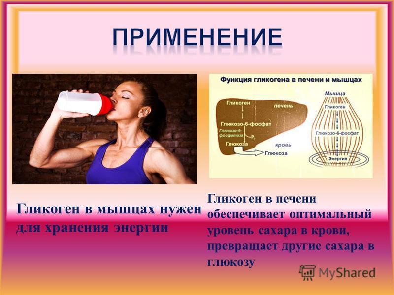 Гликоген в мышцах нужен для хранения энергии Гликоген в печени обеспечивает оптимальный уровень сахара в крови, превращает другие сахара в глюкозу