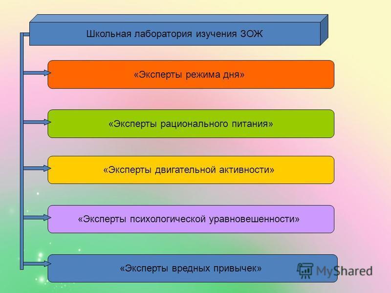 Школьная лаборатория изучения ЗОЖ «Эксперты двигательной активности» «Эксперты психологической уравновешенности» «Эксперты вредных привычек» «Эксперты рационального питания» «Эксперты режима дня»