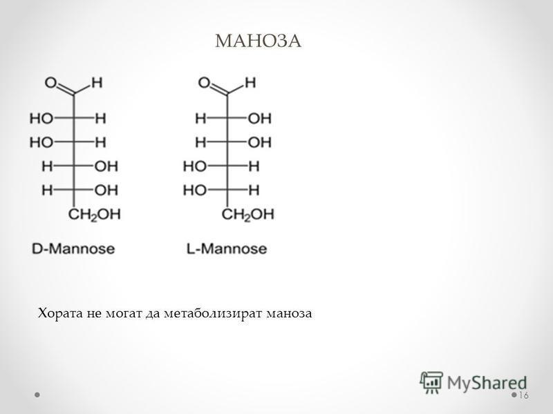 МАНОЗА 16 Хората не могат да метаболизират маноза