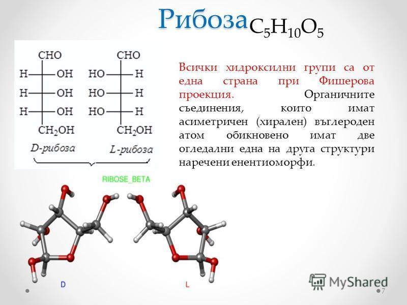 Рибоза 7 C 5 H 10 O 5 Всички хидроксилни групи са от една страна при Фишерова проекция. Органичните съединения, които имат асиметричен (хирален) въглероден атом обикновено имат две огледални една на друга структури наречени енентиоморфи.