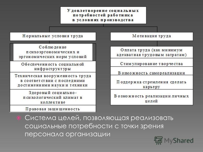 Система целей, позволяющая реализовать социальные потребности с точки зрения персонала организации