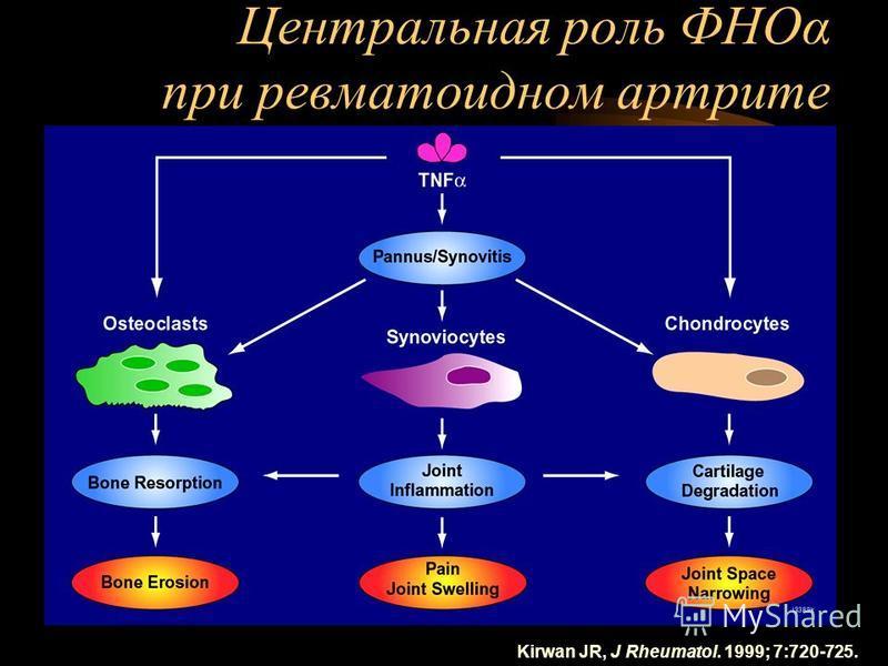 Центральная роль ФНОα при ревматоидном артрите Kirwan JR, J Rheumatol. 1999; 7:720-725.