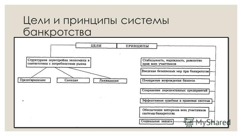 Цели и принципы системы банкротства