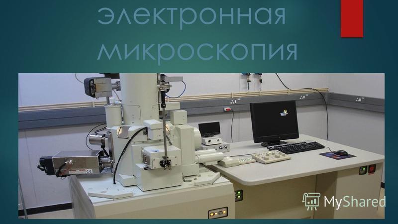сканирующая электронная микроскопия