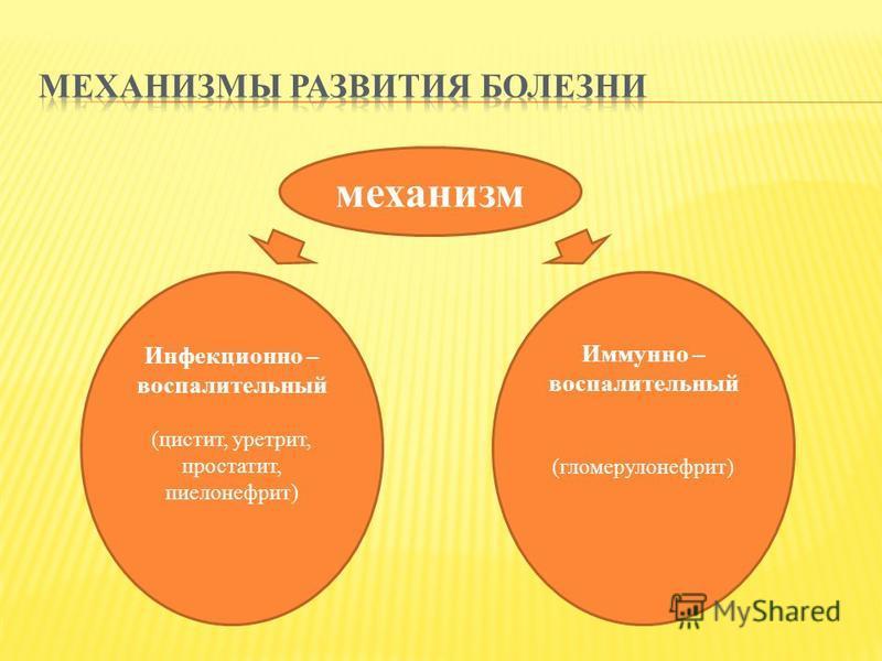 механизм Инфекционно – воспалительный (цистит, уретрит, простатит, пиелонефрит) Иммунно – воспалительный (гломерулонефрит)