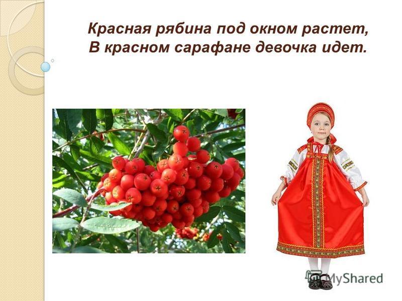 Красная рябина под окном растет, В красном сарафане девочка идет.