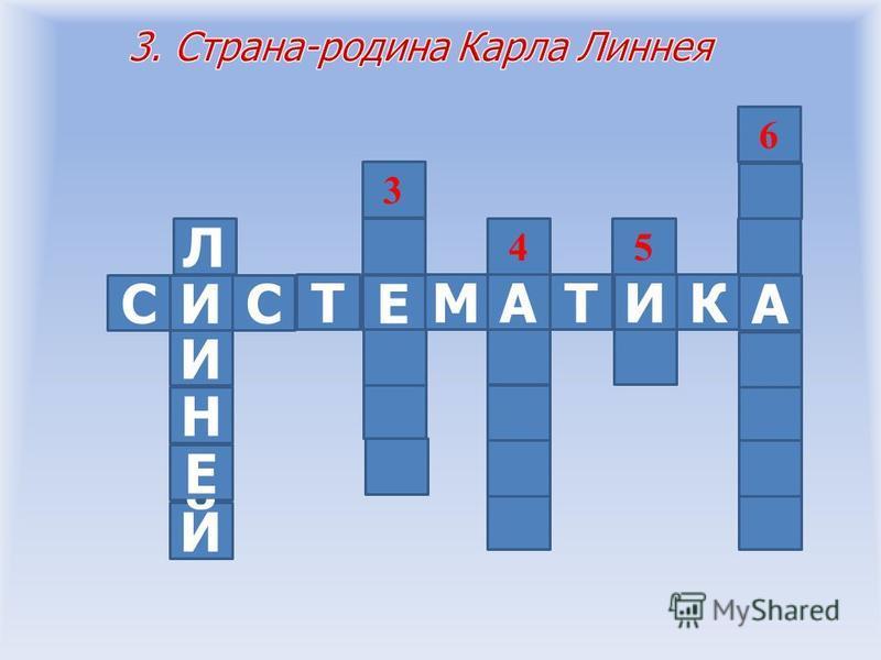 СИСА КИТА Е ТМ 45 6 2 3
