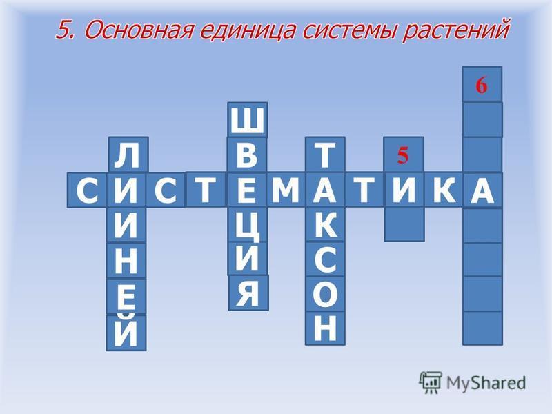 СИСА КИТА Е ТМ 45 6 И Е Н Й Л Я И Ц Ш В