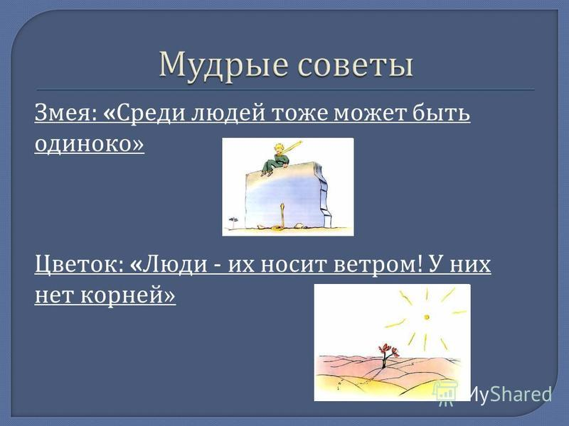 Змея : « Среди людей тоже может быть одиноко » Цветок : « Люди - их носит ветром ! У них нет корней »
