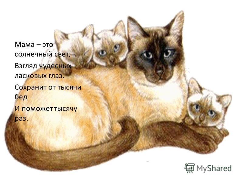 Мама – это солнечный свет, Взгляд чудесных ласковых глаз. Сохранит от тысячи бед И поможет тысячу раз.