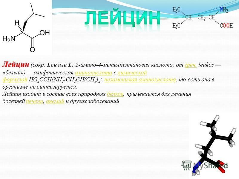 Лейцин Лейцин (сокр. Leu или L; 2-амино-4-метилпентановая кислота; от греч. leukos «белый») алифатическая аминокислота с химической формулой HO 2 CCH(NH 2 )CH 2 CH(CH 3 ) 2 ; незаменимая аминокислота, то есть она в организме не синтезируется.греч.ами