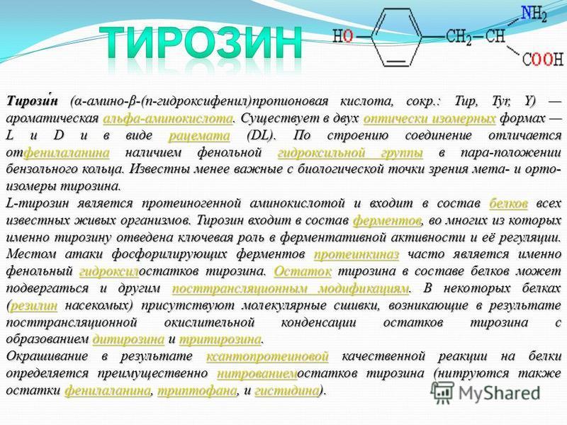 Тирози́н (α-амино-β-(п-гидроксифенил)пропионовая кислота, сокр.: Тир, Tyr, Y) ароматическая альфа-аминокислота. Существует в двух оптически изомерных формах L и D и в виде рацемата (DL). По строению соединение отличается отфенилаланина наличием фенол