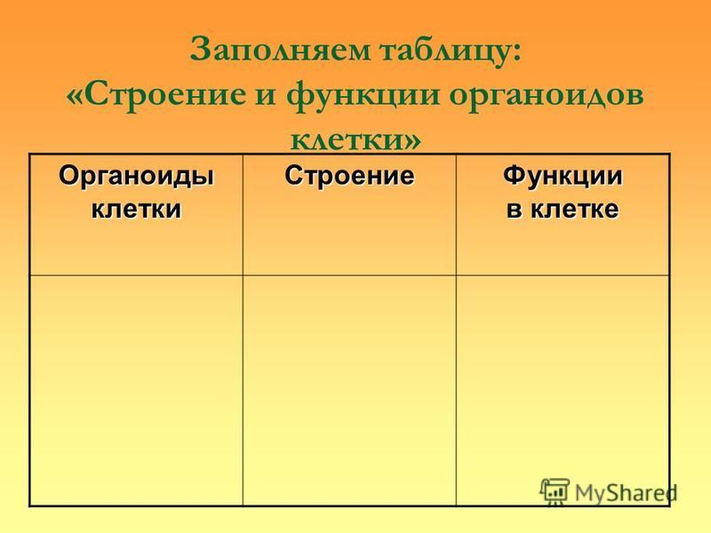 Заполняем таблицу: «Строение и функции органоидов клетки» Органоиды клетки Строение Функции в клетке
