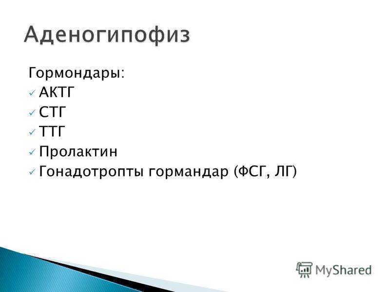 Гормондары: АКТГ СТГ ТТГ Пролактин Гонадотропты гормандар (ФСГ, ЛГ)