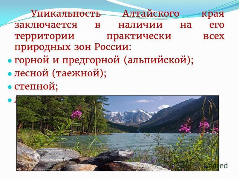 Уникальность Алтайского края заключается в наличии на его территории практически всех природных зон России: горной и предгорной (альпийской); лесной (таежной); степной; лесостепной.