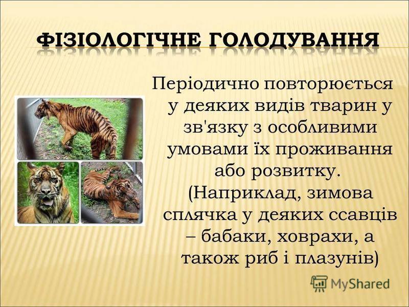 Періодично повторюється у деяких видів тварин у зв'язку з особливими умовами їх проживання або розвитку. (Наприклад, зимова сплячка у деяких ссавців – бабаки, ховрахи, а також риб і плазунів)